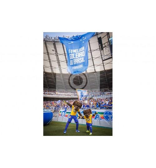 Cruzeiro x Grêmio - 5167