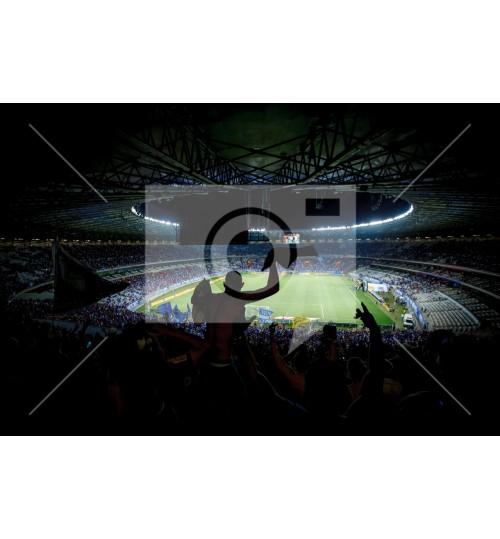 Cruzeiro x Grêmio - 2882