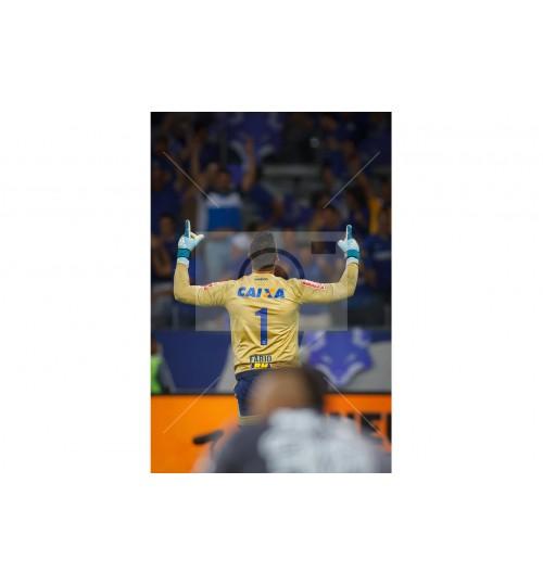 Cruzeiro x Flamengo - 7582