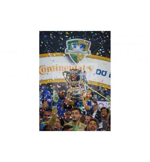 Cruzeiro x Flamengo - 7871