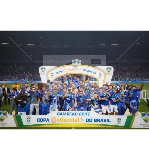 Cruzeiro x Flamengo - 9491
