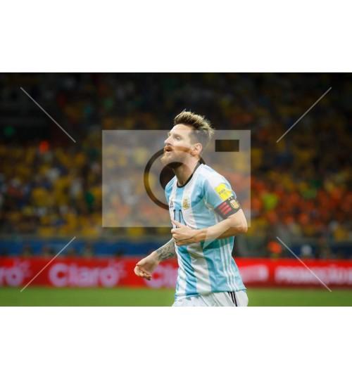 Brasil x Argentina - 8404